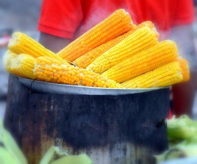 kukuřice, kastrol