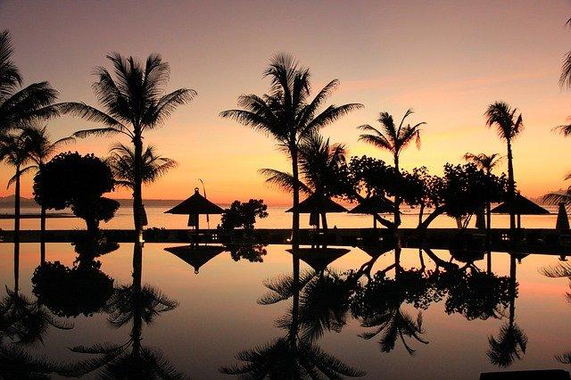 palmy na Bali.jpg