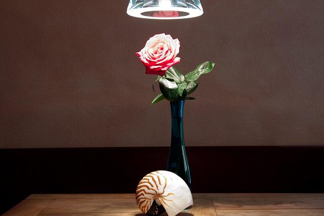 ulita u vázy.jpg